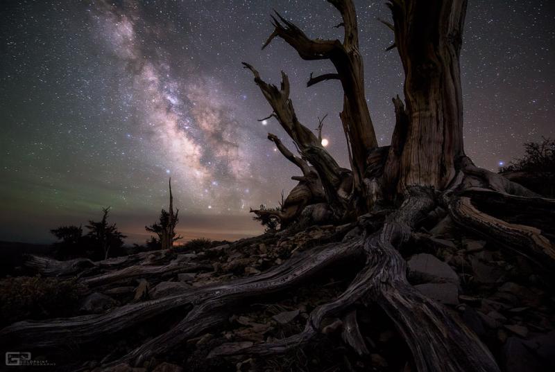 کهکشان راه شیری و سیارات
