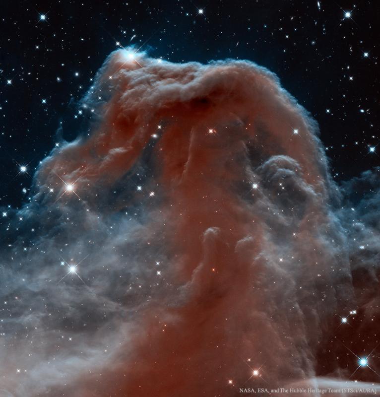 سحابی سر اسب در نور مادون قرمز