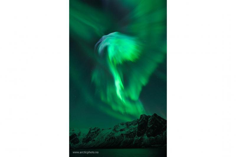 شفق قطبی عقاب برفراز نروژ
