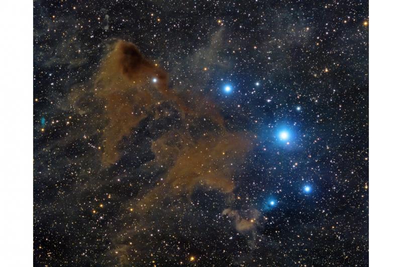 ستاره های جدید در سحابی تاریک