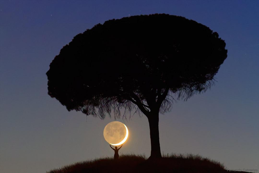 من برای تو ماه را آوردم