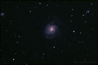 کهکشان M101 و اقمار کهکشانی