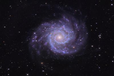 رصد یک ابرنواختر جدید در کهکشان نزدیک