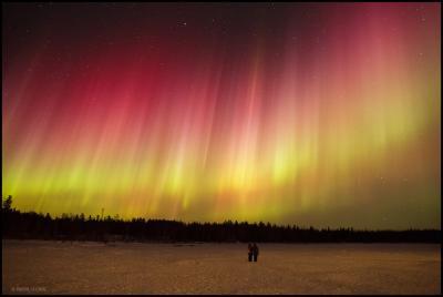 نور شمالی برفراز افق جنوبی
