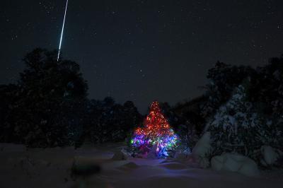 عبورشهاب بارش شهابی جوزایی بالا درخت کریسمس