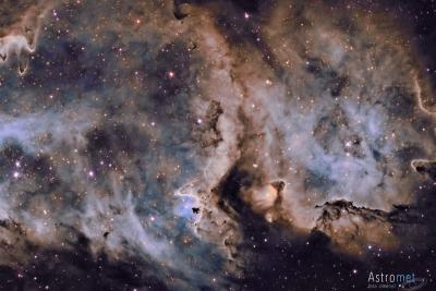 تشکیل ستاره ها در سحابی روح