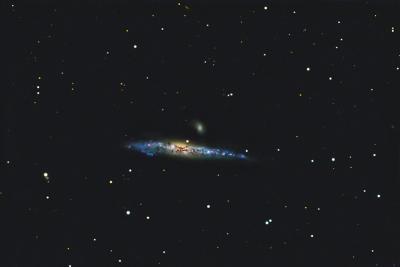 کهکشان نهنگ