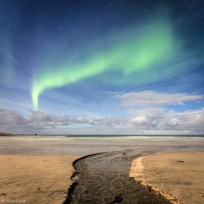 شفق قطبی برفراز ساحل