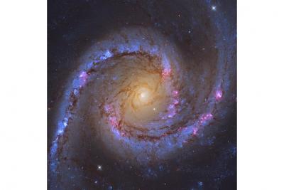 کهکشان NGC 1566، زیبا و افسونگر
