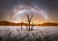 کهکشان راهشیری برفراز درختان نامبیا